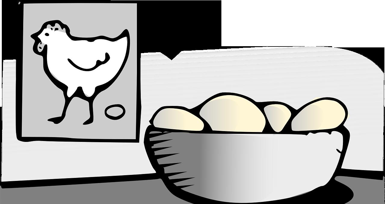 Wat was eerder: de kip of het ei